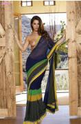 Transparent saree without choli