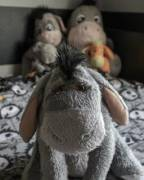 Everyone, say hello to Eeyore! He saids thank you for noticing him.