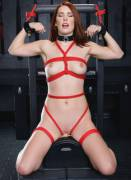 A gallery of Melody Jordan strapped onto the sybian